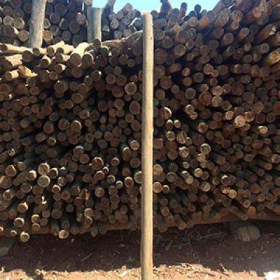 Mourão de eucalipto tratado em Itu - SP